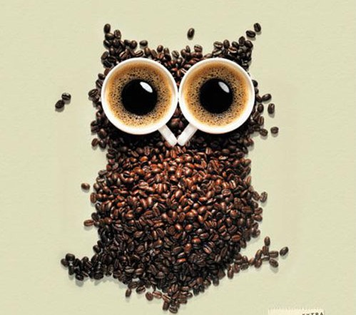 Beans and beyond - coffee-owl-poster