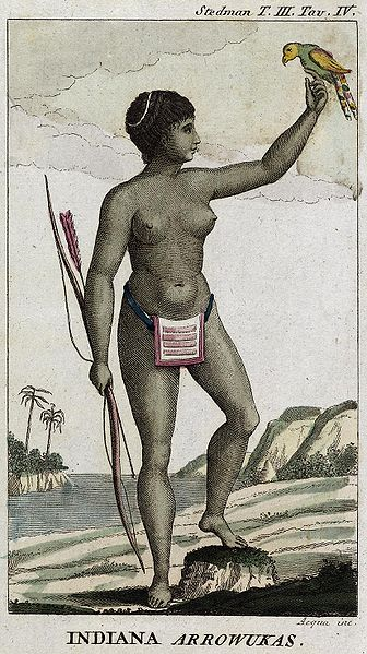 The Arawaks - one of the indigenous people of the Caribbean credited with the early use of Arrowroot